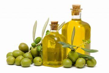 Virgin Olive Oil Rich in Polyphenols Effects Genes