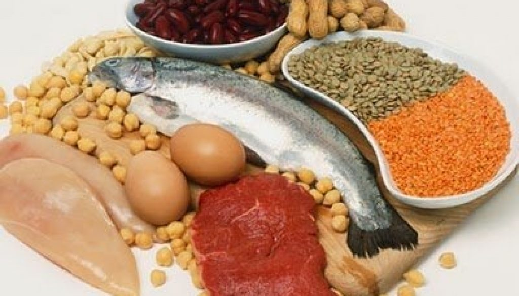 What Are Some Protein Foods and How Much Protein Do They Have?